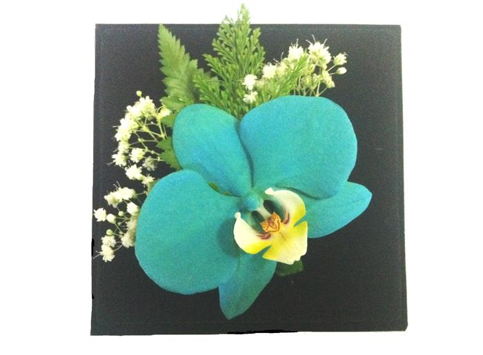 Orquídea Jade